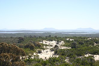 Coffin Bay National Park - Image: Coffin Bay National Park coastal heath