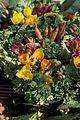 Compo Légumes Cl J Weber (23049190834).jpg