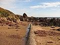 Concrete ridge, Coldingham Bay - geograph.org.uk - 2130093.jpg