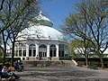 Conservatory - panoramio (1).jpg
