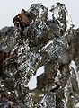 Copper-Silver-pas-117c.jpg