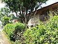 Corazon Rivera House from Pila, Laguna 06.JPG