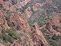 Corse-04913-réserve de Scandola-nid balbuzard.jpg