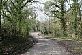 Country Lane - geograph.org.uk - 1210857.jpg