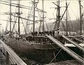 Crew standing on stacked lumber on the deck of the three-masted bark LODORE at dock, Puget Sound port, Washington, ca 1904 (HESTER 254).jpeg