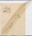 Crocodilus biporcatus - 1700-1880 - Print - Iconographia Zoologica - Special Collections University of Amsterdam - UBA01 IZ12200082.tif
