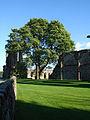 Croxden Abbey 3.jpg