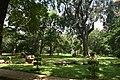 Cubbon Park DSC 5408.jpg