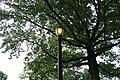 Cunningham Park South td (2019-06-05) 142.jpg