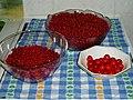 Currants-Cherries-Harvest.jpg