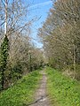 Cycle track along the old railway line from Truro to Newham - geograph.org.uk - 765808.jpg