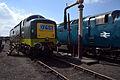 D9009, 55019 - Didcot Railway Centre (8863729385).jpg