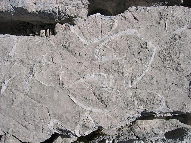 Vápenec - výroba vápna a cementu
