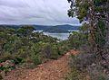 Dangar Island - panoramio.jpg