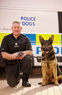 Image Result For Dog Handler Training