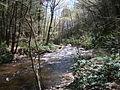 Delaware Water Gap National Recreation Area - Pennsylvania (5677791875).jpg