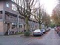 Delft - panoramio - StevenL (100).jpg