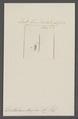 Dentalium duplex - - Print - Iconographia Zoologica - Special Collections University of Amsterdam - UBAINV0274 081 10 0020.tif