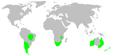 Distribution.orsolobidae.1.png
