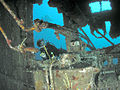 Diver exploring the Aguila wreck, Roatan, Honduras.jpg