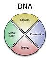 Dna-model2.jpg