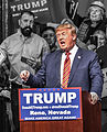 Donald Trump in Reno, Nevada January 2016.jpg