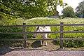 Donkey at Ferny Hill Farm, Ferney Hill, Hadley Wood, Herts - geograph.org.uk - 793915.jpg