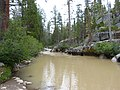 Douglas-Creek-near-Stanislaus-National-Forest,-California.jpg