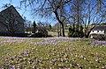 Drebacher Krokuswiesen..2H1A0062WI.jpg