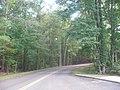 Driving loop 2, Horseshoe Bend NMP.jpg