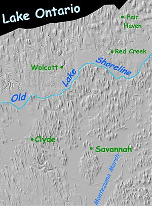 Drumlin - Drumlin field in Western New York state. The drumlins align with glacial flow.