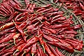 Drying Korean chillies.jpg