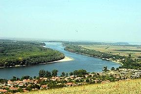 Dunojaus intakas tisa