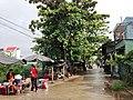 Duong Nguyen Van Troi, Long Chau, tx Tanchau - panoramio.jpg
