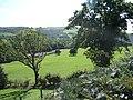 Dyffryn Dyfi - geograph.org.uk - 240931.jpg