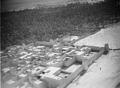 ETH-BIB-Das Oasendorf von Adrar, durch hohe Erdmauern vor dem Einfall der Wüstenräuber geschützt-Tschadseeflug 1930-31-LBS MH02-08-0392.tif