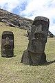 Easter Island, Rano Raraku, moais (6686213531).jpg