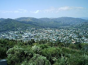 City-end Karori from Wrights Hill summit
