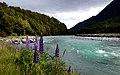 Eglington river. Fiordland NP.NZ. (23446446971).jpg