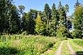 Eglisau - Rhinsberg, spätbronzezeitliche Höhensiedlung - neuzeitliche Hochwacht 2011-09-21 13-33-10.jpg