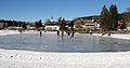 Eisläufer auf dem Titisee.jpg