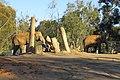 Elephants at the San Diego Zoo 2.jpg