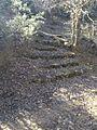 Escaleras de Piedra en la Dehesa del Carrascal.jpg