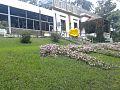 Escuela Municipal de Jardineria 2.jpg