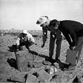 Excavations at Faras 010.jpg