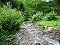 Exmoor , East Water - geograph.org.uk - 1212159.jpg