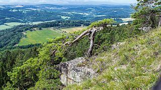 FFH Gebiet 5233-304 Muschelkalk-Landschaft westlich Rudolstadt Gölitzwände DE-TH 2.jpg