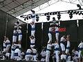 Falcons a la Mercè 2007 P1080495.JPG