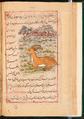 Faraḥ nāmah 056.png