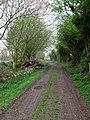 Farm Track near Poling - geograph.org.uk - 1251056.jpg